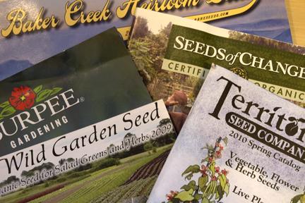 Seed Catalogs PlanterTomato.com