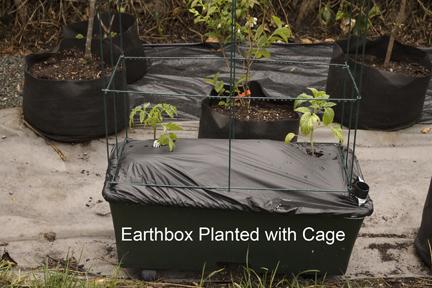 Earthbox2