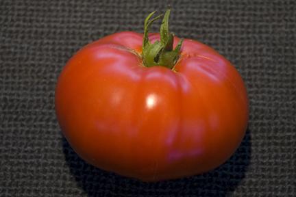 PlanterTomato_OregonSpring