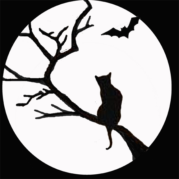 Cat&Moon