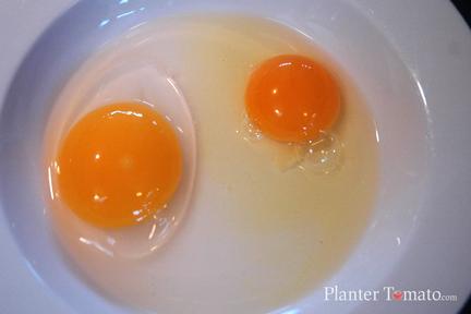 Duck Egg Yolk