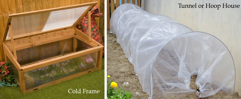 ColdFrameHoopHouse